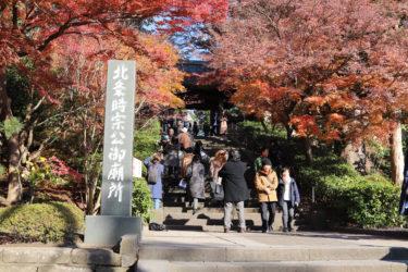 円覚寺の門前の紅葉は圧巻!見どころやアクセス方法を紹介します!